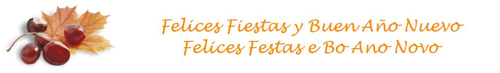 Cabecera - Felicitacion - Fiestas